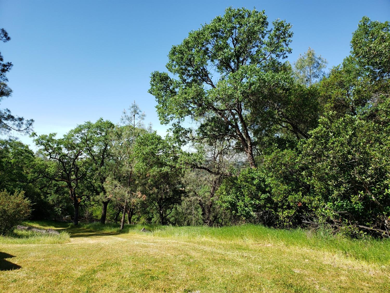 5-Acres Arrowbee Dr, Placerville, CA, 95667
