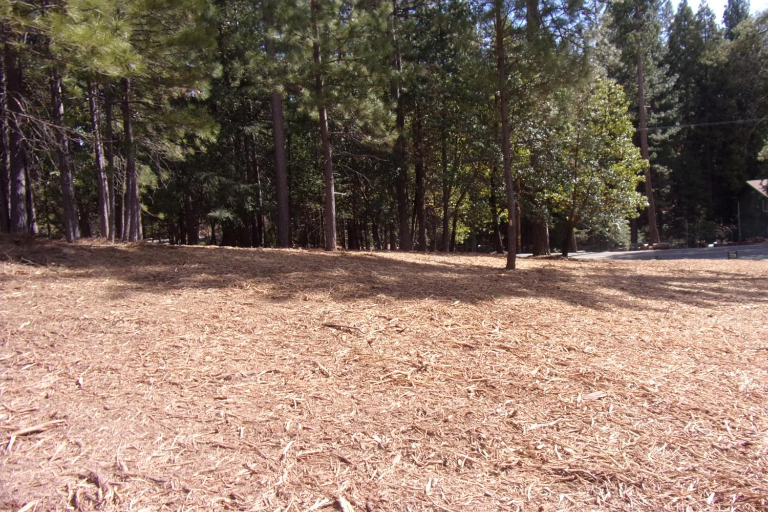 Nice corner lot in popular neighborhood!  This half acre lot has been freshly brush cleared and is ready for you!  Power, water and telephone are at the lot.  Will need a septic.  Located at the corner of Sugar Pine Dr./Ashland View Ct.  Only 40 miles to Skiing at Kirkwood Meadows and 66 miles to Sacramento!
