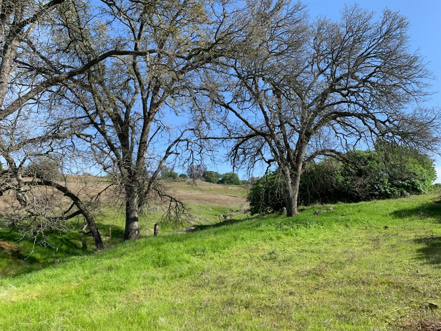 This property is located in the path of progress off Bass Lake Road & is within the Bass Lake Hills Specific Plan Area. Beautiful majestic oak trees set among rolling land ideal for custom homes to be built. Views from higher elevation on this parcel. Zoned MPD (Medium Planned Density) . Maps are available, please confirm with El Dorado County for details. There is an older mobile home on the property that will remain with no value. Detached garage too. Septic system & electricity on the property. Must have agent to view this property.