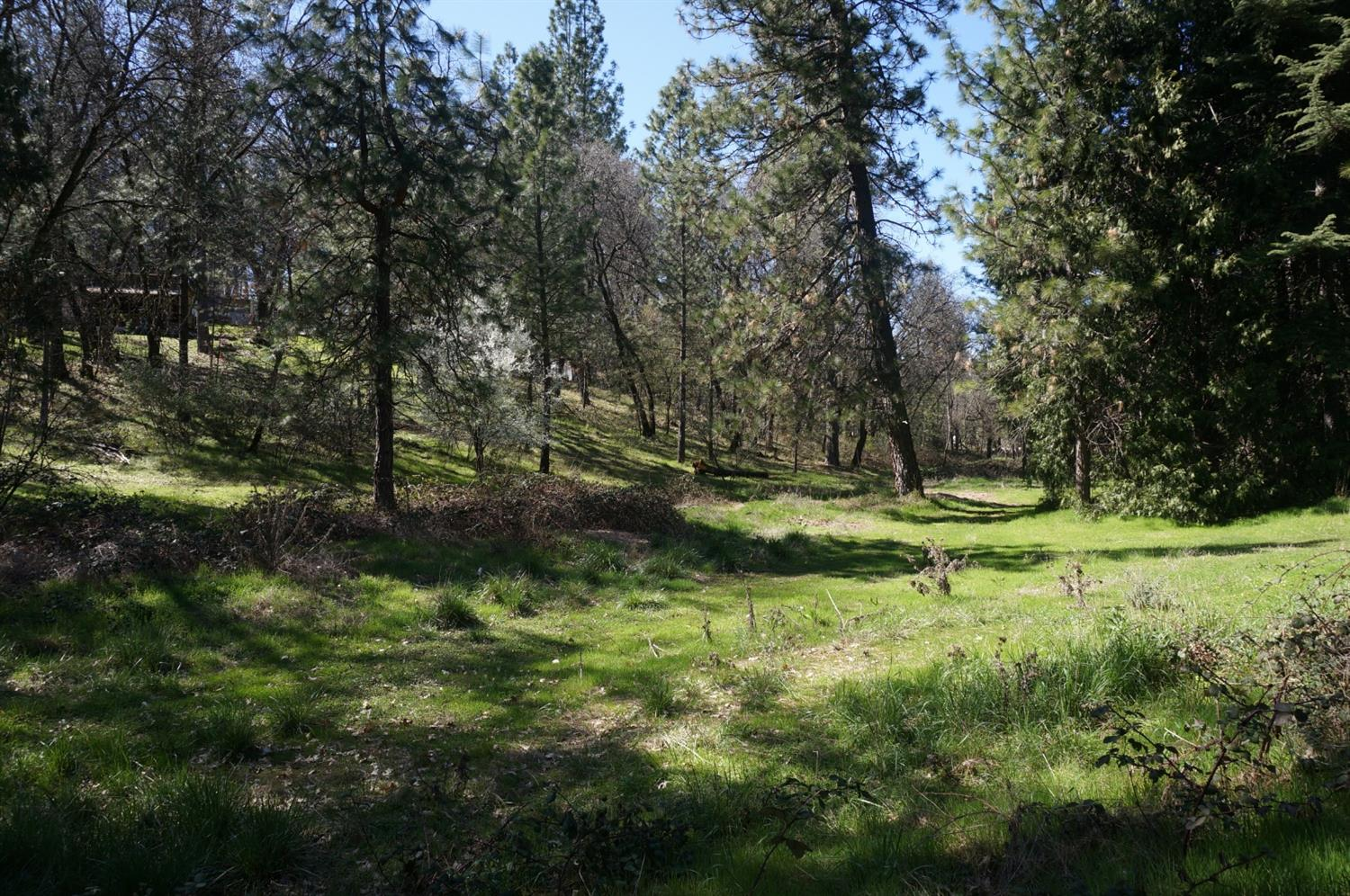 In Desirable Meadow Vista.   Possible 4 Lots Split, tentative map available!