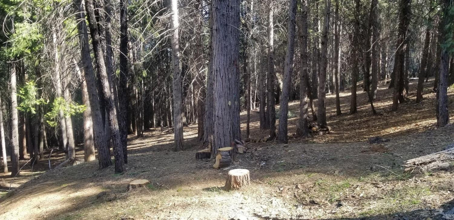 Great Location on over 3 Acres with PAID WATER METER! Less than 1 minute to Sly Park Rd and under 3 miles to Sly Park Recreational Area. About 1 hour to So Lake Tahoe and even less to Sierra-At-Tahoe Resort. Walking distance to the Cedar Park Trail in the El Dorado National Forest.  Drive 3 miles to Holiday market or 5 miles to Safeway.  Fire hydrant within 100' & utility pole near corner of property. Two easy building sites on this property with frontage on Lupin Lane.  Snow removal, Road maintenance, Clubhouse w/pool table and 2 Swimming pools. Tennis Court included in HOA fees.  Forest management by PG&E currently underway.