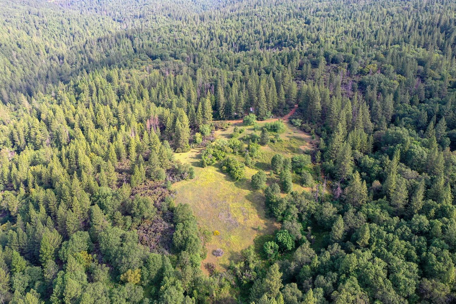 For sale in El Dorado county, near Georgetown, 251 acres of beautiful timberland with trails and roads and a stream. In two connecting parcels. (157) (93). Could be used for a hunting club, a bikers group, ATV enthusiast, or just a great mountain getaway. Has three trailers, a 50' a 35' and a 24'. A tool shed and 2, 40' containers that are roofed over to make a garage. Has a Rubber tired Ford tractor with a 5  foot wide brush hog and a 5' box Gannon scraper. A 550 ga. Fuel tank w/stand. Power, and a well producing 125 gallons per minute. Has not been logged in 27 years. Family owned since 1953. Located in an El Dorado county Green Zone, potentially qualifies for exterior commercial cannabis grow. Offered at $799,900.    Listed with parcel 0