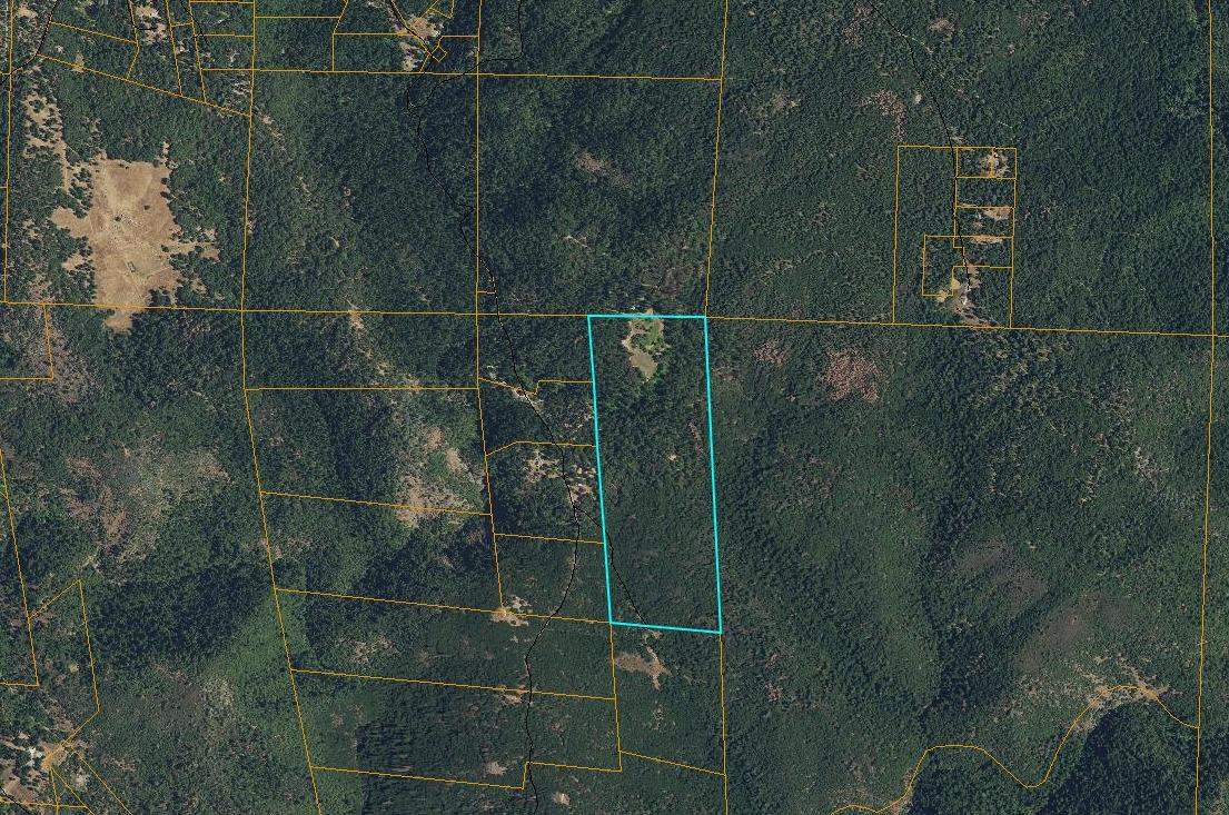 For sale in El Dorado county, near Georgetown, 251 acres of beautiful timberland with trails and roads and a stream. In two connecting parcels. (157) (93). Could be used for a hunting club, a bikers group, ATV enthusiast, or just a great mountain getaway. Has three trailers, a 50' a 35' and a 24'. A tool shed and 2, 40' containers that are roofed over to make a garage. Has a Rubber tired Ford tractor with a 5  foot wide brush hog and a 5' box Gannon scraper. A 550 ga. Fuel tank w/stand. Power, and a well producing 125 gallons per minute. Has not been logged in 27 years. Family owned since 1953. Located in an El Dorado county Green Zone, potentially qualifies for exterior commercial cannabis grow. Offered at $799,000.    Listed with parcel 0