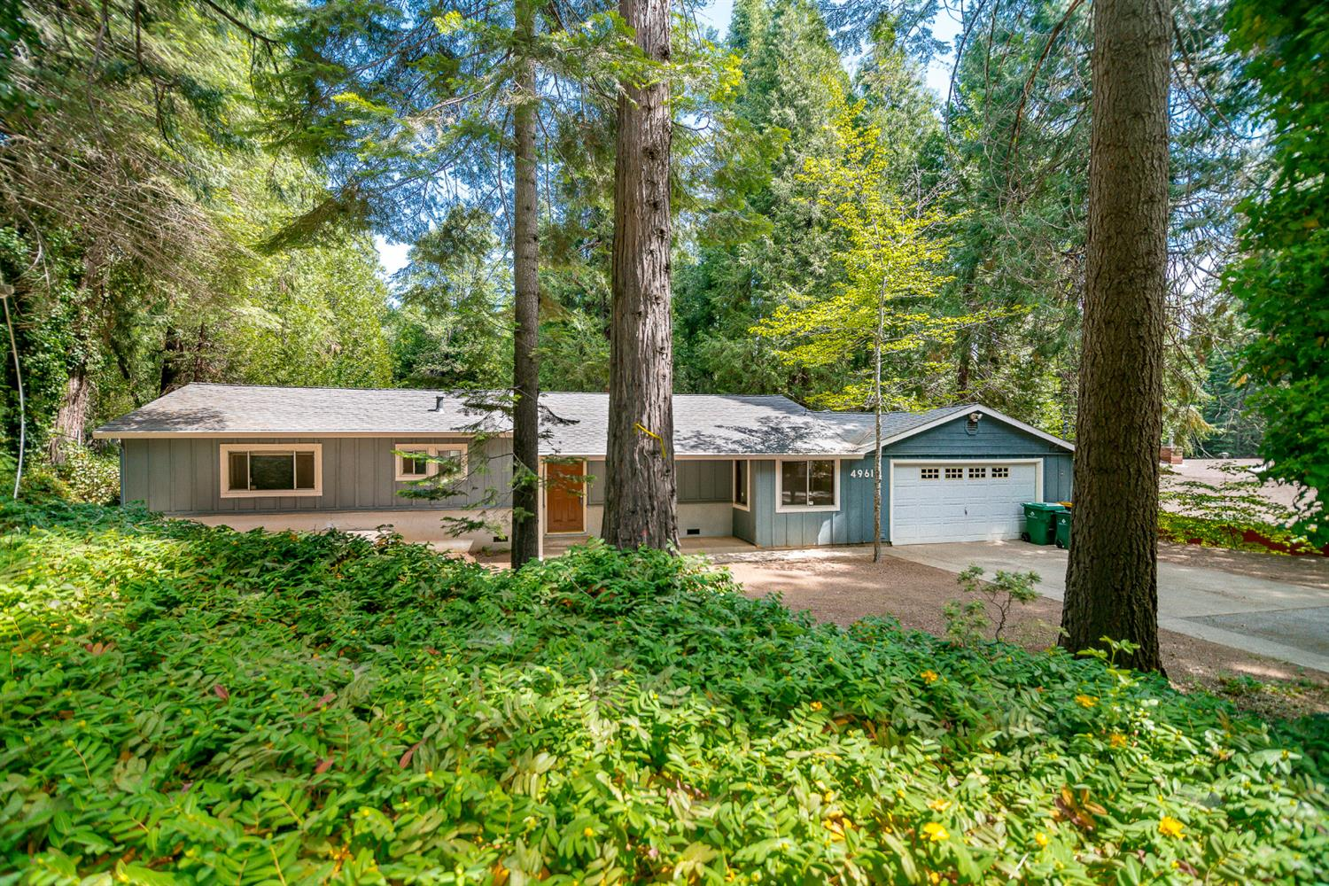 Are you looking for your own piece of private paradise near Apple Hill?  Do you need 3 bedrooms and 2 baths?  How about a large lot with sheds and a dog run?  Central heat and air!  Brand new carpet!  Newer roof! Buy this home today!