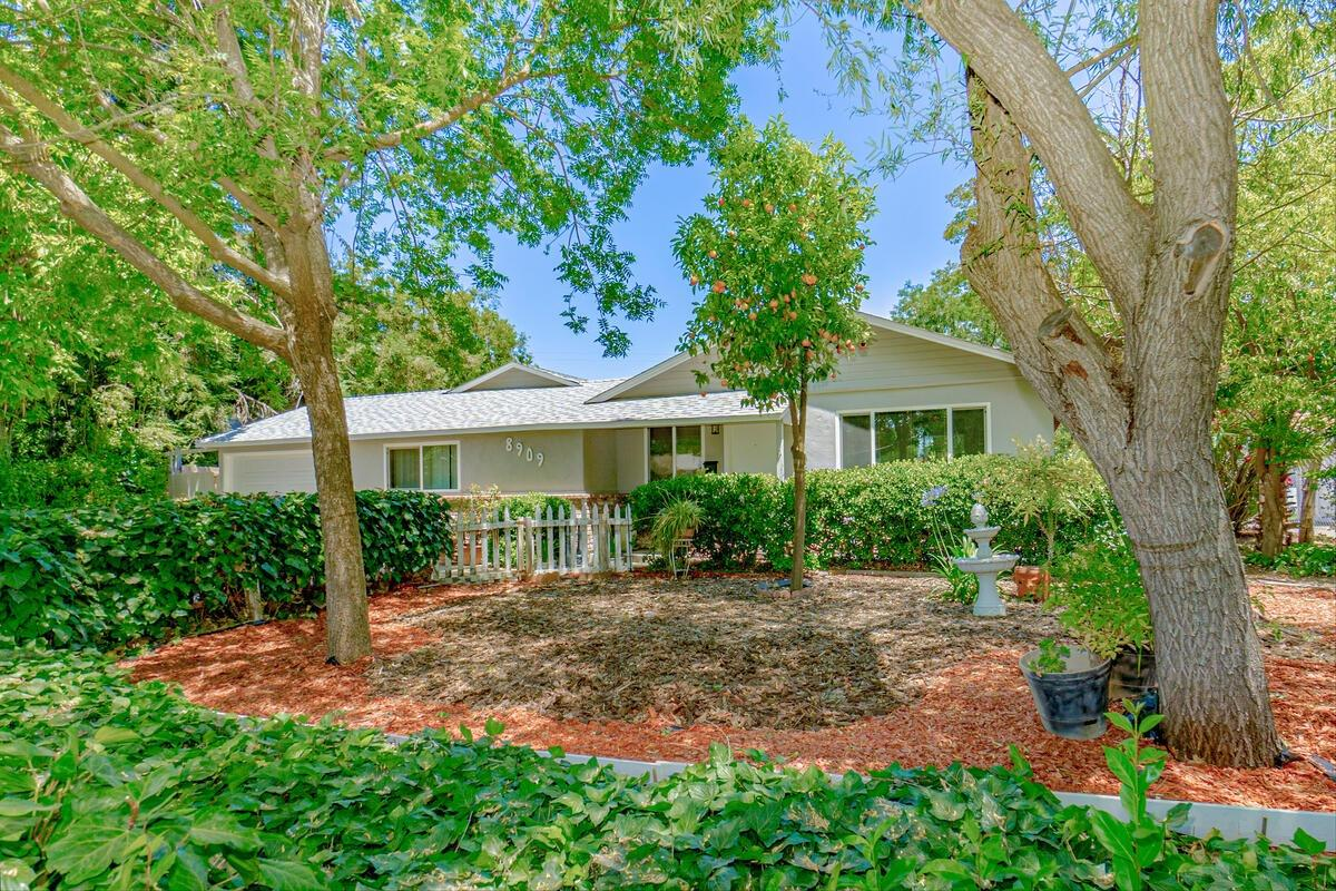 Welcome to this beautiful, charming single story home in a well established, peaceful Orangevale neighborhood. Upgrades include kitchen countertops, front yard landscaping, newer roof and more. There could be space for a boat and RV if new landscaping is done. Down the hall, you'll find an open, spacious Great room which could be used as an entertainment, game room or bedroom. This property also has an amazing pool and tranquil, private, large quarter of an acre backyard for relaxing or entertaining family and friends. Gorgeous original hard wood flooring and conveniently located near shopping, parks, and recreation.