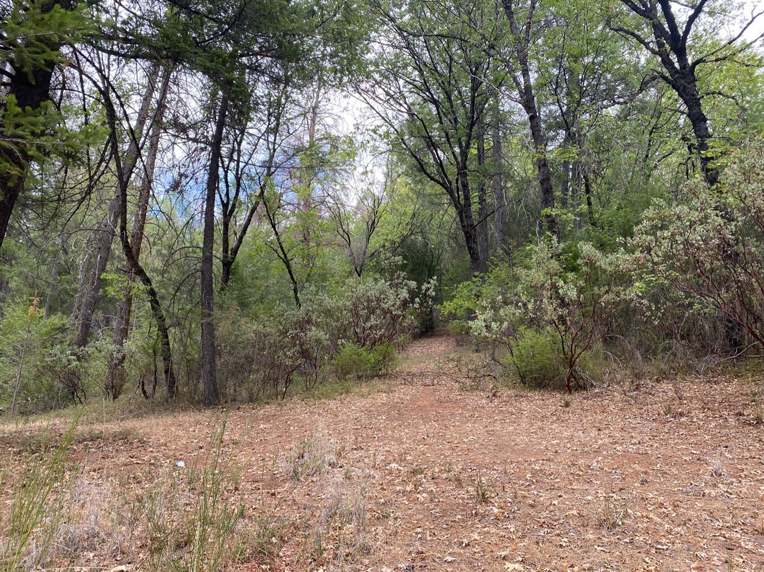 2.4 acres in Kelsey with deeded access. Your opportunity to own a piece of land in El Dorado County!